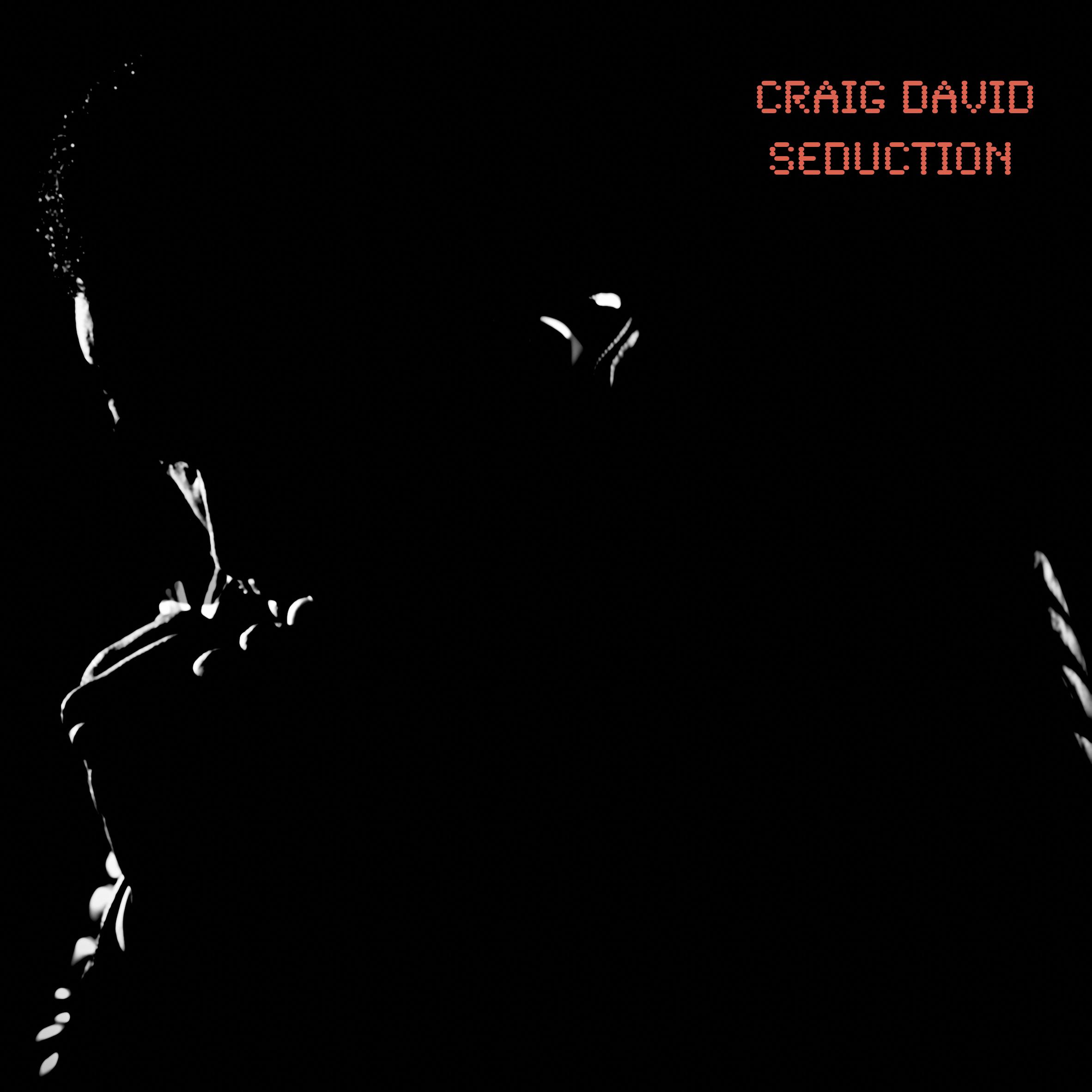 Craig David Seduction