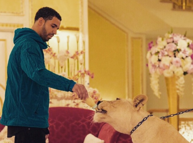 Drake feeding dog