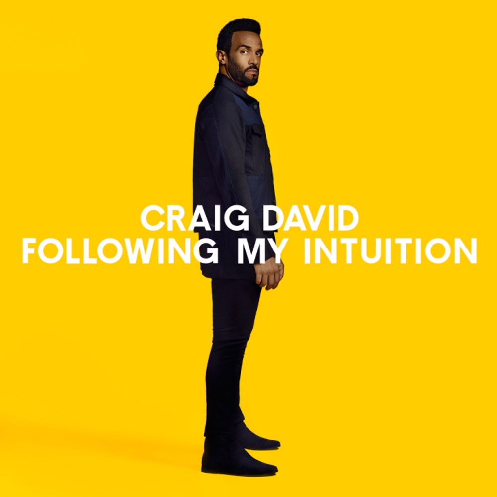 Craig David Following My Intuition Artwork