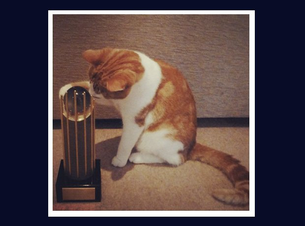Disclosure cat with Mercury Prize award