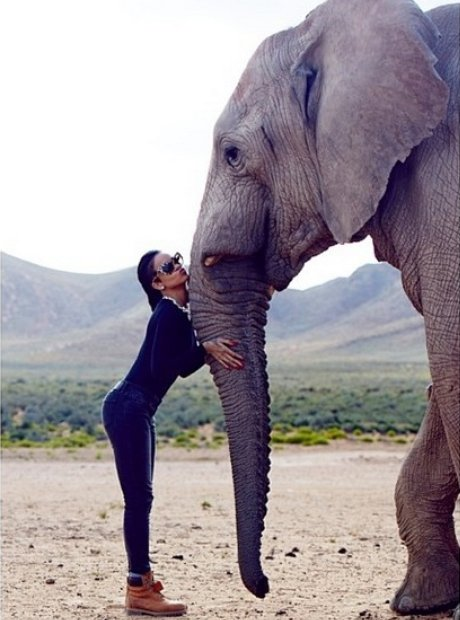 Rihanna with an elephant
