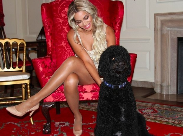 Beyonce With Dog Tumblr