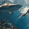 Image 6: Rihanna swimming with sharks Harpers Bazaar