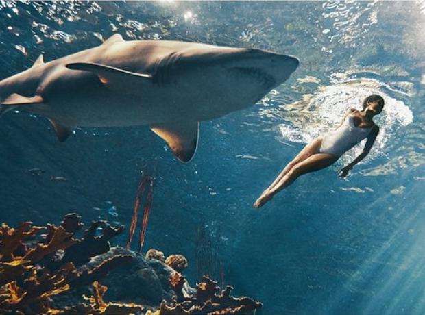 Rihanna swimming with sharks Harpers Bazaar