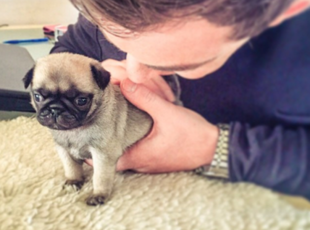 Hardwell and his pup