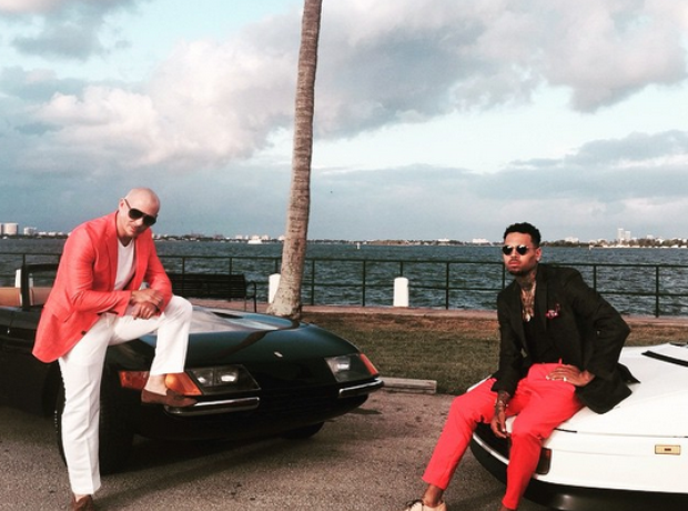 Chris Brown Pitbull Fun Video