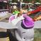 Image 3: Chris Brown Royalty and Disney Land