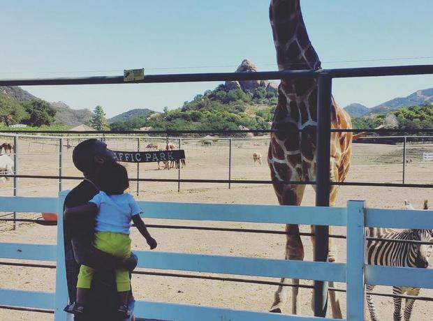 Chris Brown Royalty Zoo