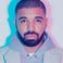 Image 1: Drake beard