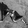 Image 4: Kim Kardashian naked desert shoot