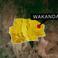 Image 6: Wakanda
